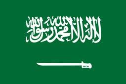 Saudi Arabia fireworks